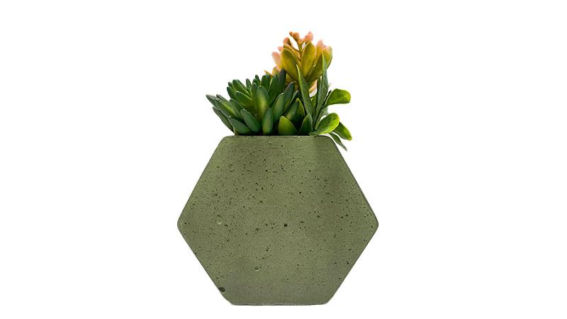 Hexa vaza